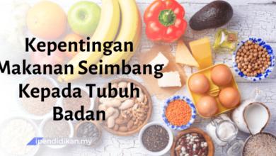 contoh karangan kepentingan makanan seimbang kepada tubuh badan