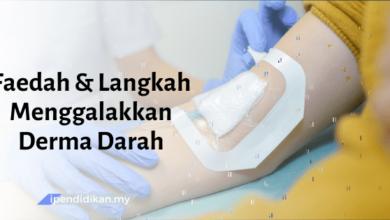 contoh karangan faedah dan langkah menggalakkan derma darah
