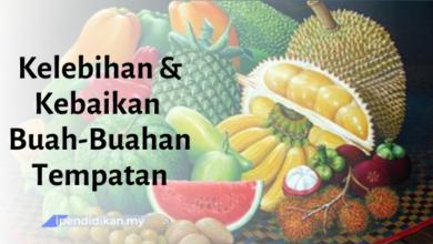 contoh karangan kebaikan dan kelebihan buah buahan tempatan