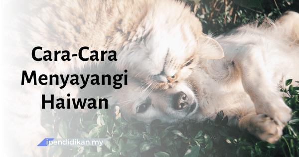 karangan cara sayangi haiwan